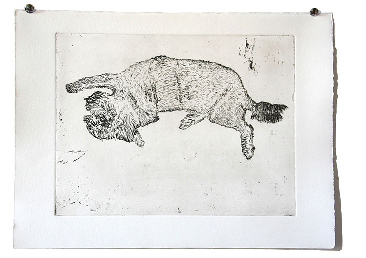 dog etching